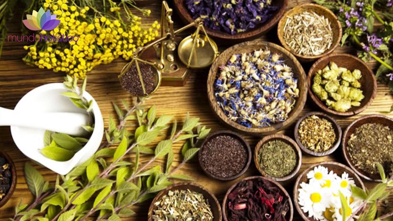 La herbolaria como medicina antigua y tradicional